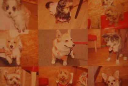 2010.5.1ちゅりちゃんお泊り♪0012
