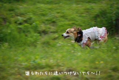 2010.5.1ちゅりちゃんお泊り♪0024