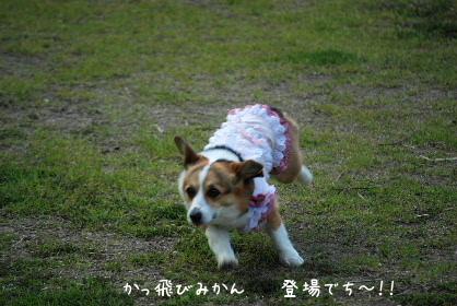 2010.5.1ちゅりちゃんお泊り♪0021