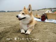 2010.5.5きりれもと海&たろはな0019