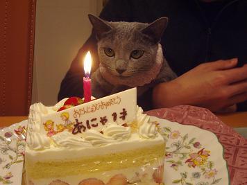 誕生日1歳