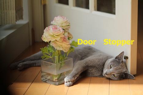 ドアストッパー