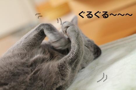 ぐるぐる~