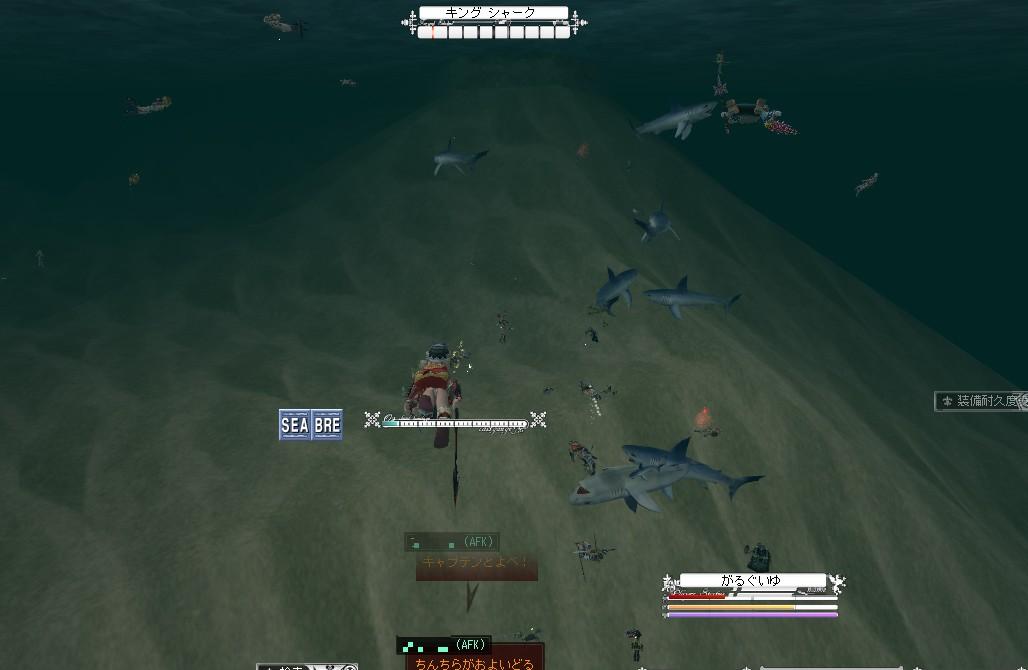 なんともいっぱいなサメ