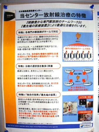 日本動物高度医療センターの放射線治療の方針