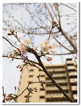 2010-03-31-09.jpg