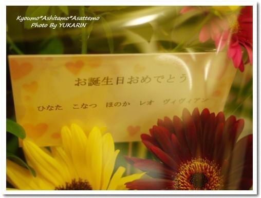 2010-08-08-01.jpg