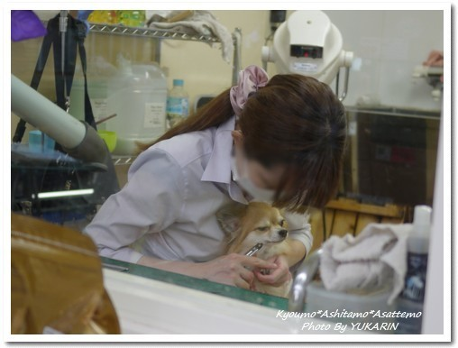 2010-09-29-01.jpg