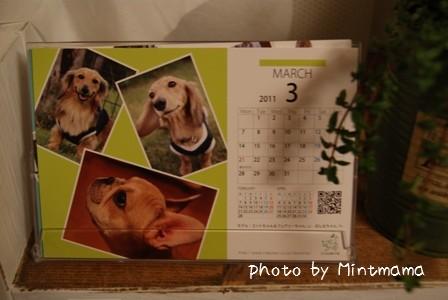2010-12-28-01.jpg