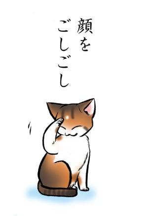猫絵本「みだしなみ」3