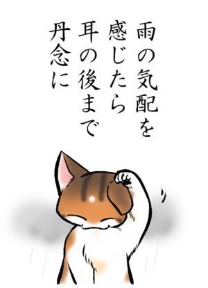 猫絵本「みだしなみ」4