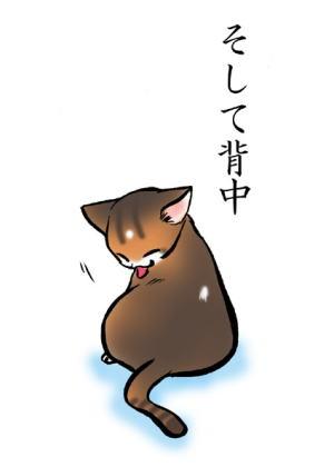 猫絵本「みだしなみ」5
