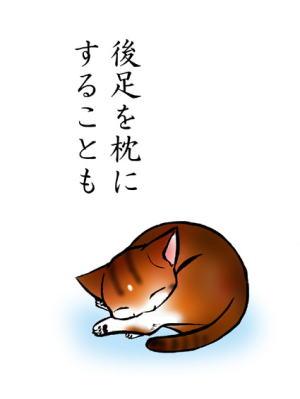 おやすみ~5