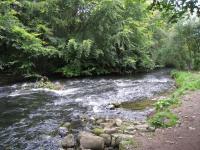シートン公園のドン川①