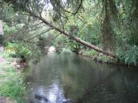 シートン公園のドン川②