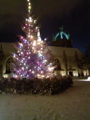 クリスマスツリー@夜