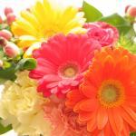 Tamny Flowersのお花 その5
