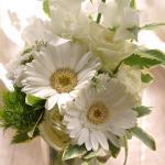 Tamny Flowersのお花 その6