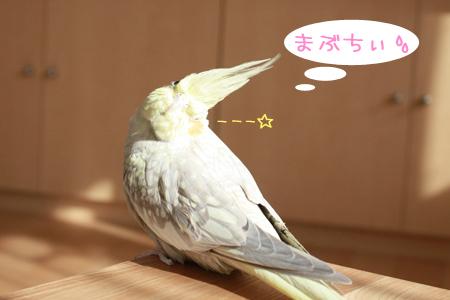 (^_-)---☆
