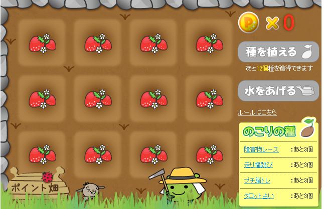 ポイント畑_0126
