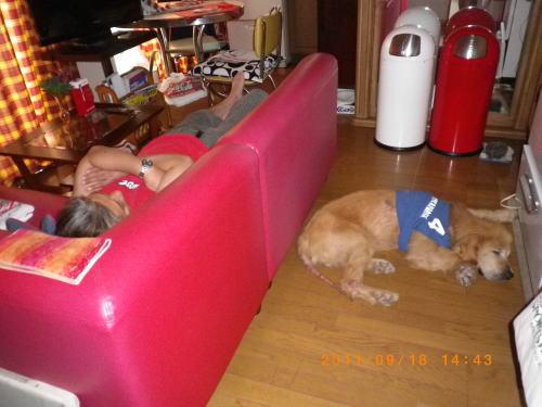 2011.9.帰宅後お昼寝の2人