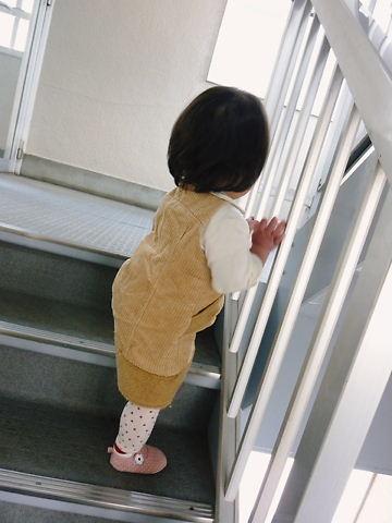 階段を登ったよ