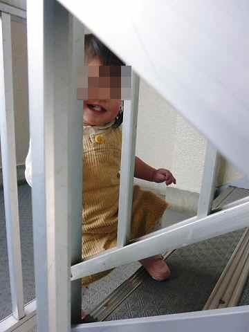 階段を登ったよ ニコッ