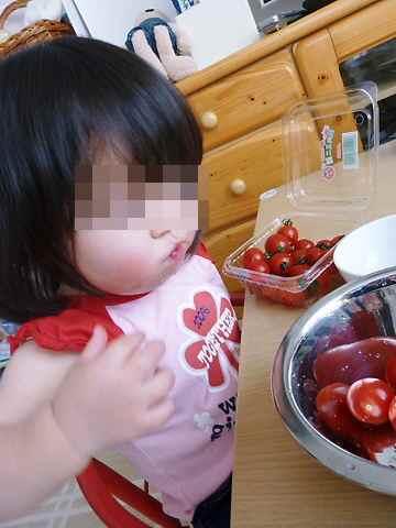 トマトのヘタとり つまみぐい