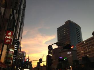 楽ヘナから始まる世界(東京)⑯_convert_20141105210419