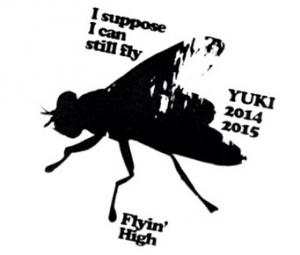 YUKI Flyin' High_convert_20141203175342