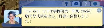 2013031933.jpg