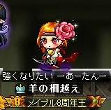 Maple111230_003146.jpg