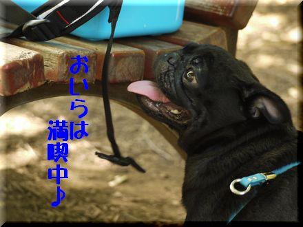 ここは渋谷区代々木中津川?7