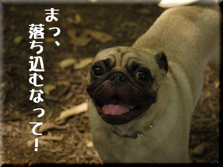 ここは渋谷区代々木中津川?8
