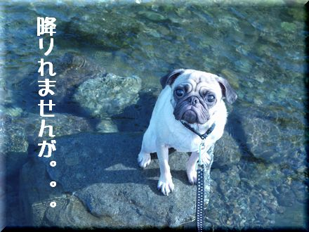 ついにリベンジ中津川っ!!4