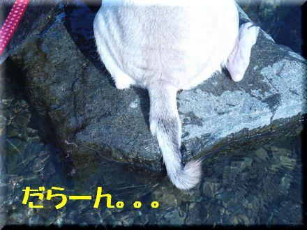 ついにリベンジ中津川っ!!9