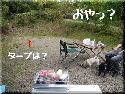 ディキャンプへGo~♪4