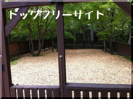 2011年初キャンプ・軽井沢スウィートグラスへ4