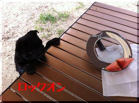 2011年初キャンプ・軽井沢スウィートグラスへ27