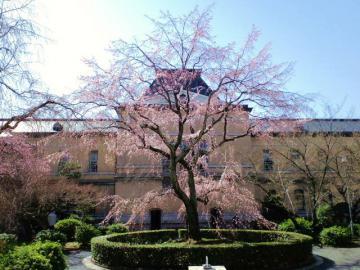 旧本館中庭
