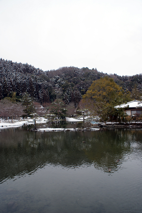 20100213_8