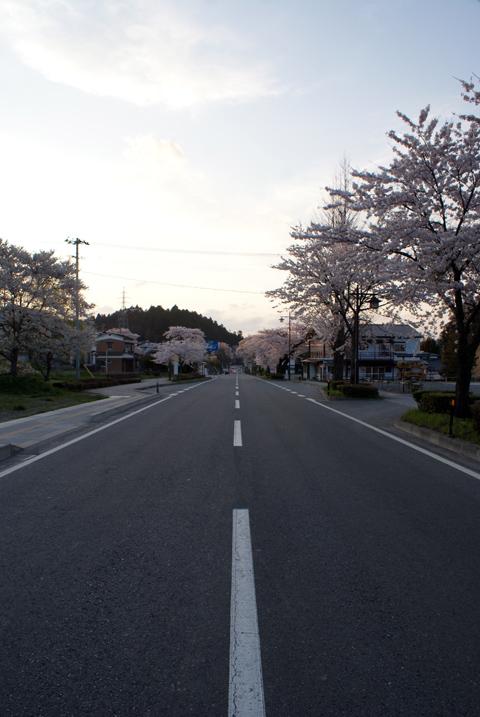 20100501_7