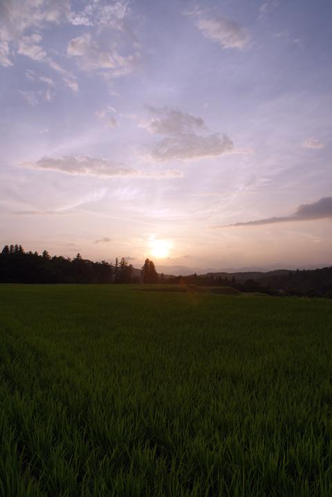 20100714_5