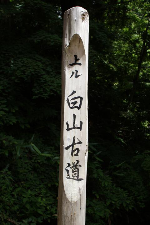 20100719b_18