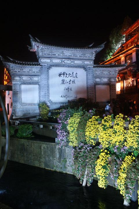 20101118_33