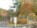10月11日紅葉風景 005