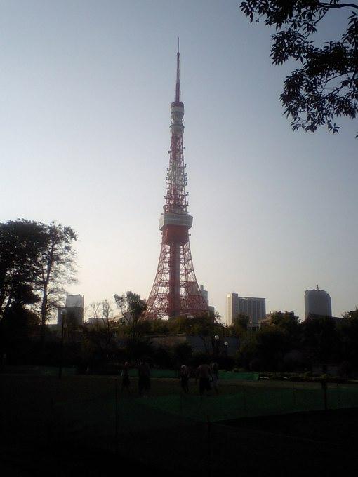 東京タワー~芝公園より