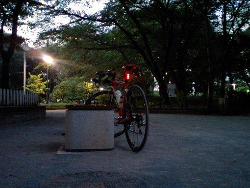 夕暮れの新宿中央公園
