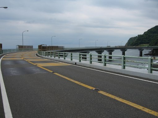 大崩海岸2010
