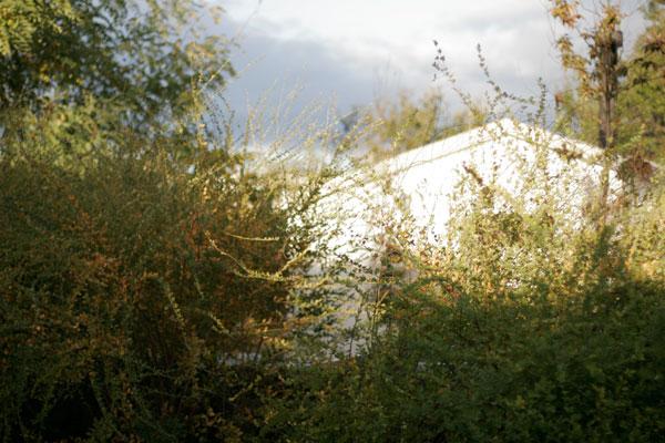 2010111702.jpg